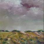heidelandschap in Drenthe